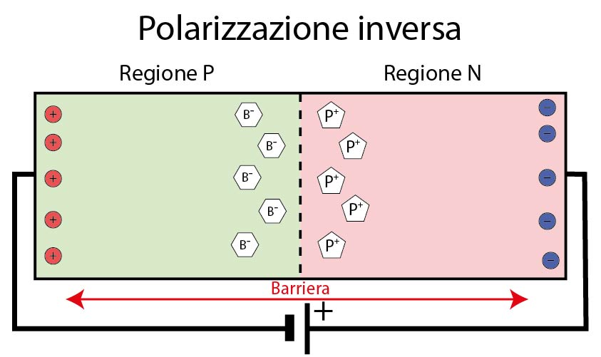 Polarizzazione inversa della giunzione pn